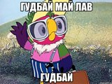 kesha_16383171_orig_